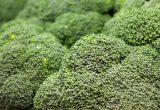 Arranca la primera Semana del Brócoli con acciones en supermercados y en redes sociales
