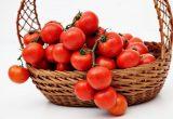 España: gran inversora en investigación de tomate