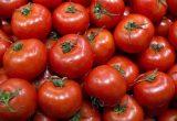 Tomate y pimiento, productos estrella en la recta final de la campaña de otoño-invierno