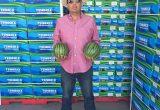 Hazera puts partnership first at Fruit Logistica 2017
