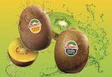Zespri® aterriza en Fruit Logística con un nuevo stand con realidad aumentada