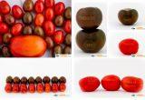 Tecnología láser para un etiquetado más ecológico al grabar la piel de la fruta