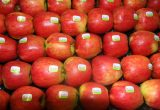 Rubens® apple international Project is growing up. Delta Agrar Ltd (Serbia) new North Hemisphere Distributor