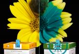 Natupol Excel®, la colmena que se comunica con los abejorros
