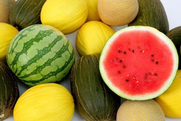 melon y sandía