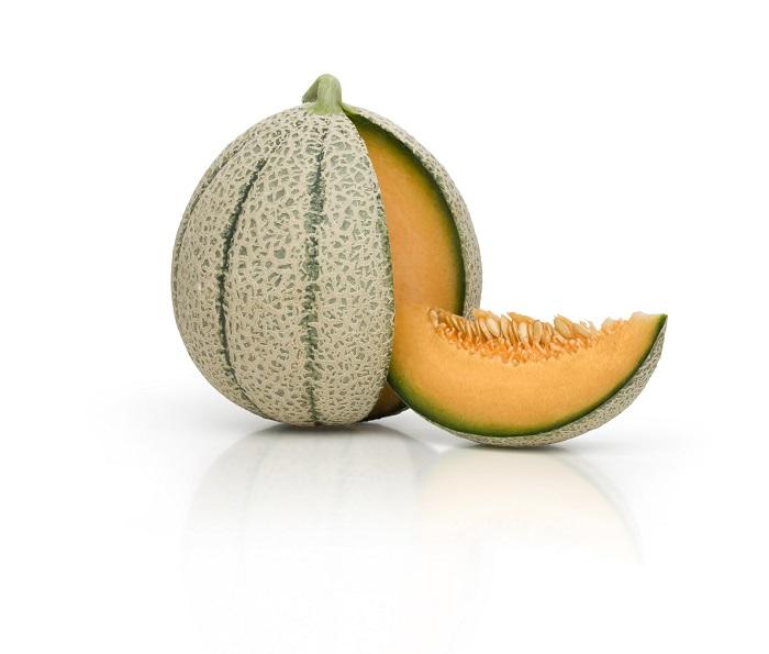variedad jacobo melón semillas fitó
