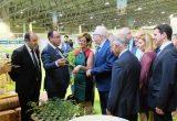 La consejera de Agricultura andaluza entregará los premios de Infoagro Exhibition
