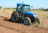 Los agricultores empiezan a destruir las cosechas de cebollas y patatas ante el hundimiento de precios