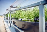 Bayer introduces ForwardFarm in The Netherlands