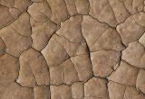 sequía y desertización
