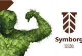 Symborg fortalece las raíces de los cultivos desde las semillas