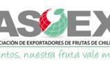logo asoex