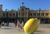 limon-frente-Estacion-Norte