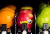 vending fruta