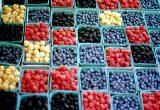 berries packaging frutos rojos