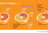 España copa el 57% de la exportación UE de naranjas