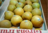 manzana vintage girona fruits