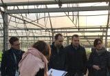 Saint-Charles Export recibe varias visitas de compradores