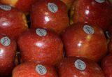 envy manzanas