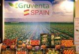 GRUVENTA SPAIN