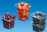 Fruit Logistica presenta lanzamientos mundiales, en Europa y próximos estrenos en la feria