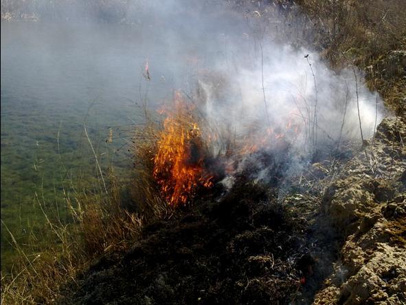 quema-restos agricolas