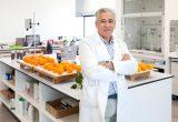 La nueva cera de Citrosol reduce las mermas de cítricos en envíos lejanos