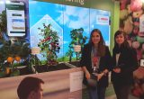 Bosch Field Monitoring: The new solution for the agricultural sector