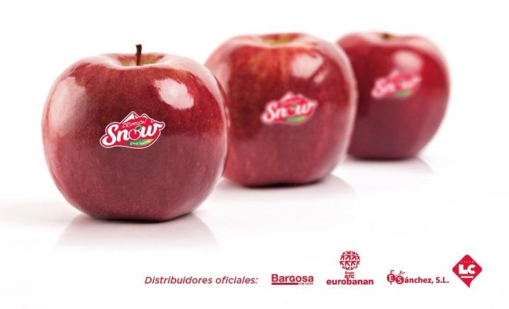 crimson snow manzana