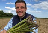 Latest Asparagus Hybrids from Global Plant Genetics Prove Their Worth in Tough Conditions