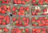 bandejas plastico packaging fresas