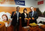 Refreshing Chilean citrus promotions aim to boost consumption in the UK and Japan
