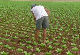 LA UNIÓ pide a Elena Cebrián que traslade al Mº Agricultura la necesidad de redistribuir las ayudas de la PAC