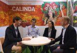 Calinda_FA2018 fresh forward