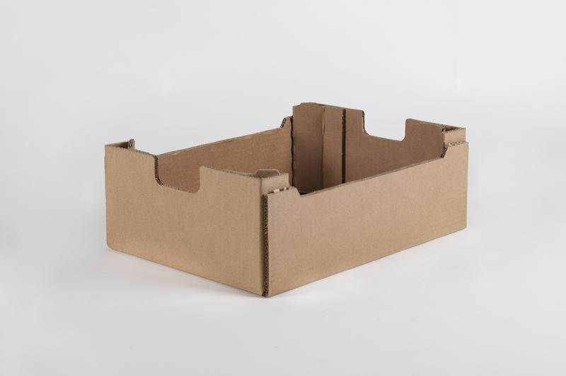 caja carton saeco