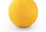 melón GALIA Sidonia de semillas fitó