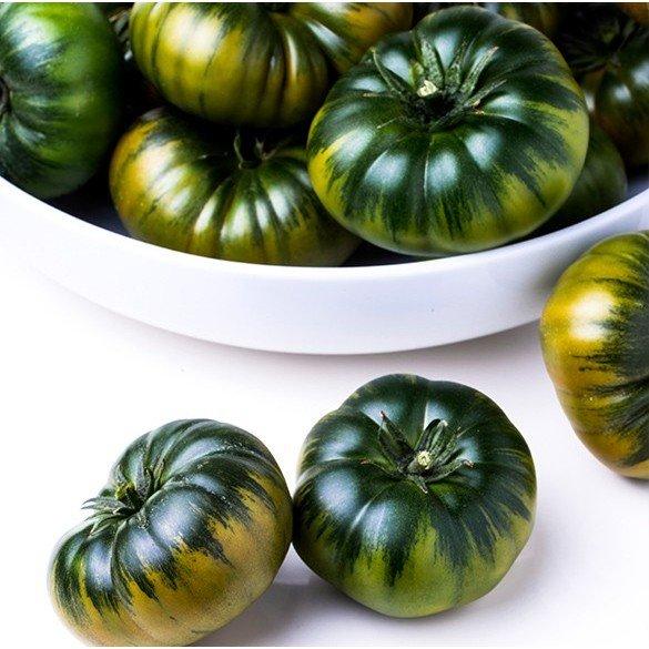 Tomate Raf CASI