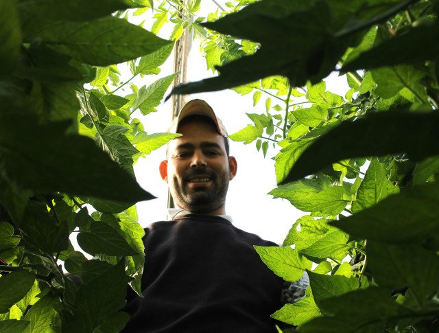 coexphal agricultor marroqui mohamed-lahlou