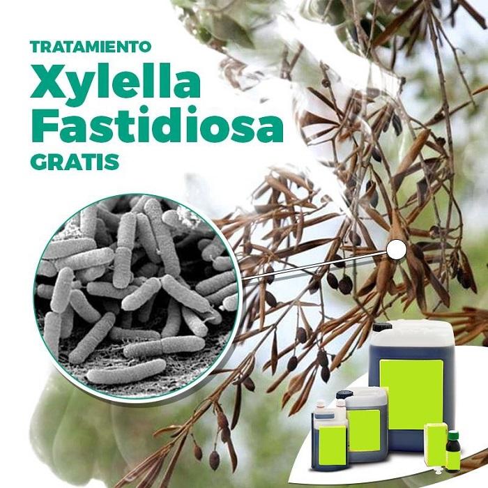 Tratamiento Xylella