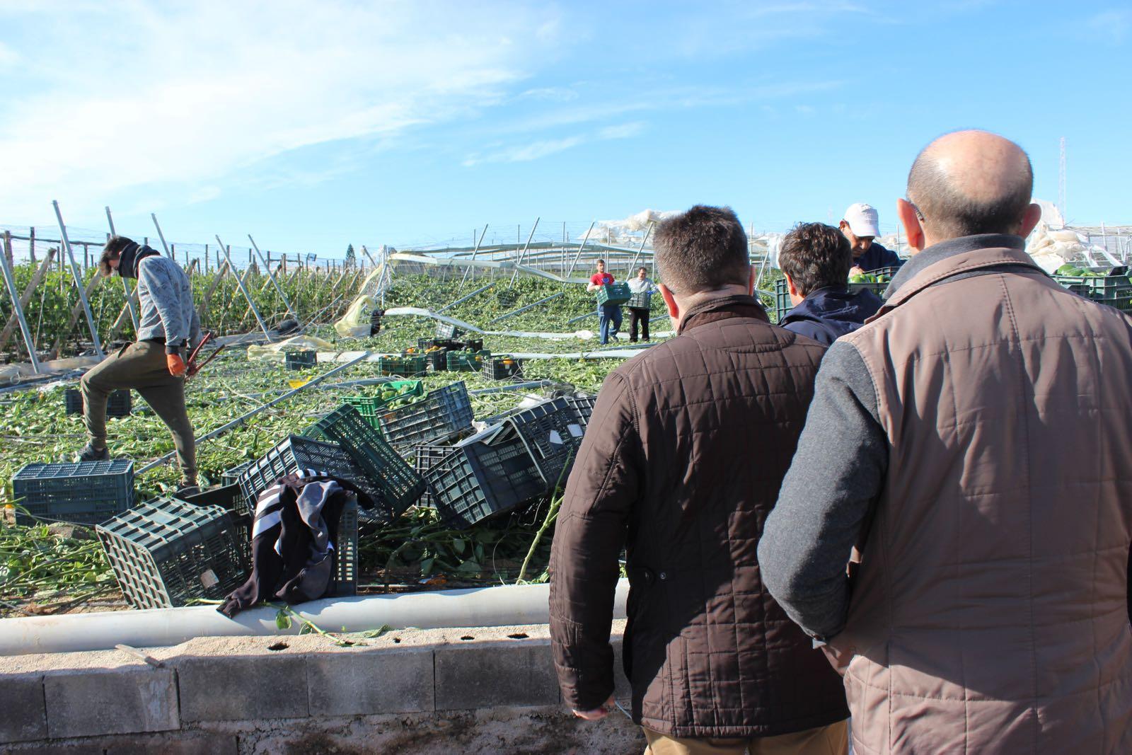 180107_Daños tornado (3) ejido