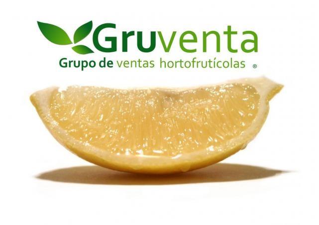 Foto-limones-GRUVENTA