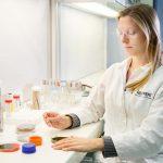 fungicida biológico trianum laboratorio koppert