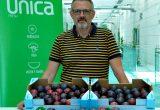 albeto-martinez-fruta-de-hueso-unica-fresh