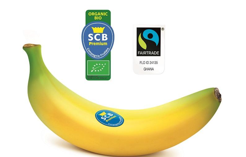 imagen banana bio SCB Compagnie Fruitière: