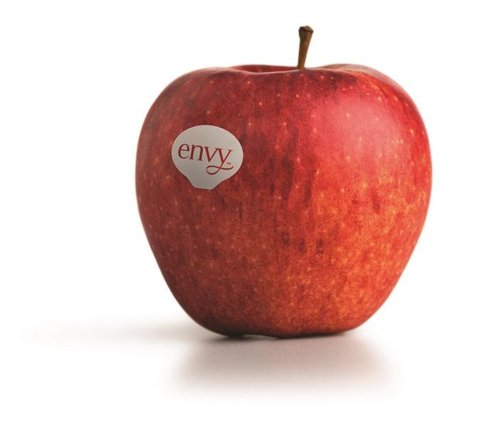 Envy manzana