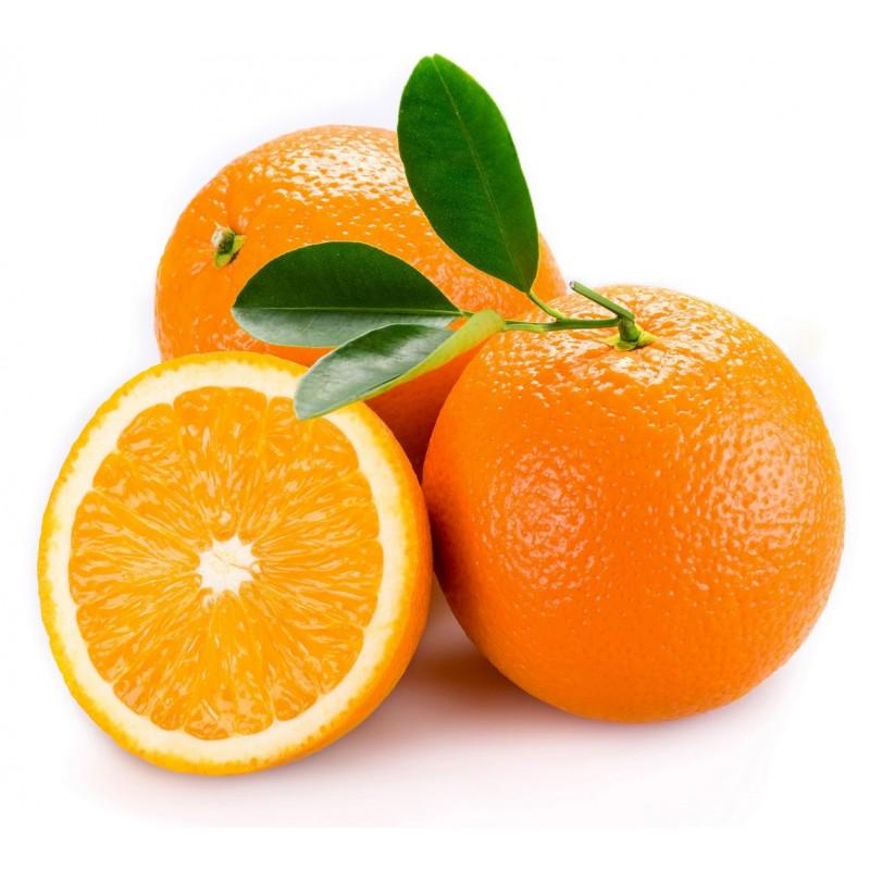 Naranjas variedad Navelina