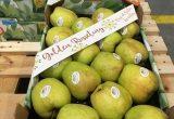 Golden Russeting manzana livinda nufri