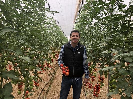 RIJK ZWAAN responsable de Cultivo de Tomate, Manuel Hernández
