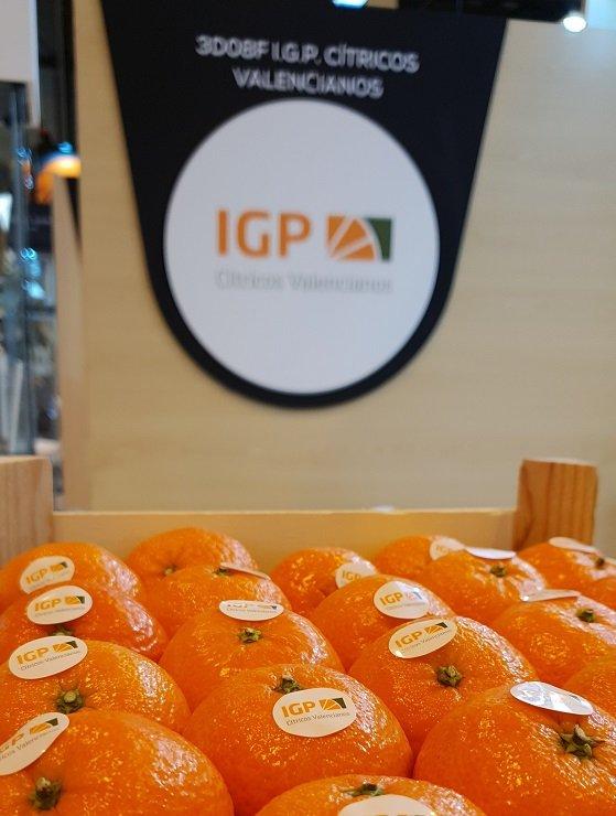 CITRICOS VALENCIANOS_Encajado clementinas IGP en stand
