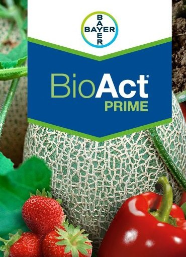 bayer bio act prime